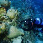 У берегов Кипра обнаружен затонувший корабль с амфорами