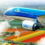 Суд Нидерландов разрешил выделить помощь KLM